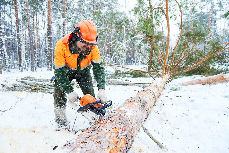 winter work injury